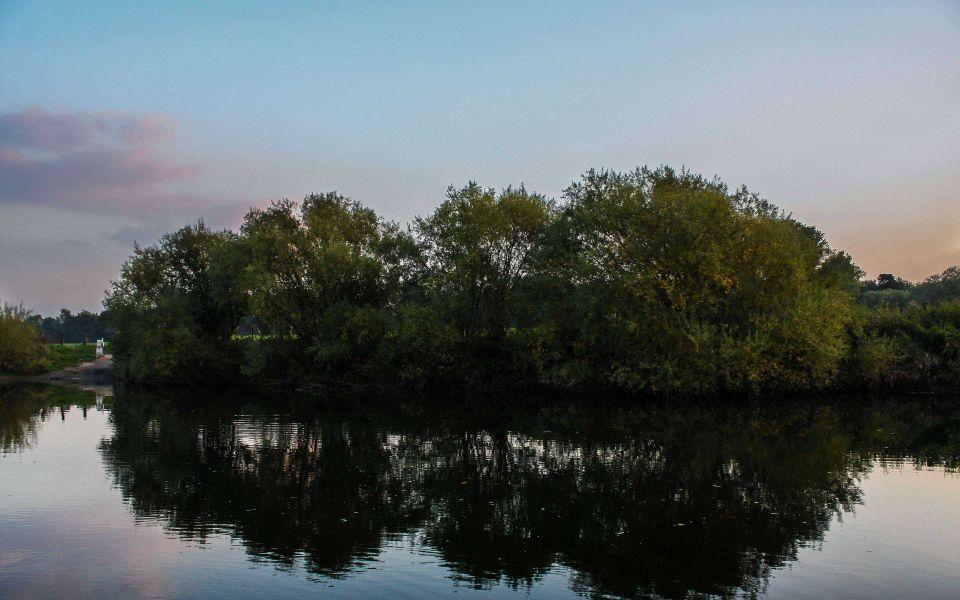 Hintergrundbild Baumgruppe an der Lippe