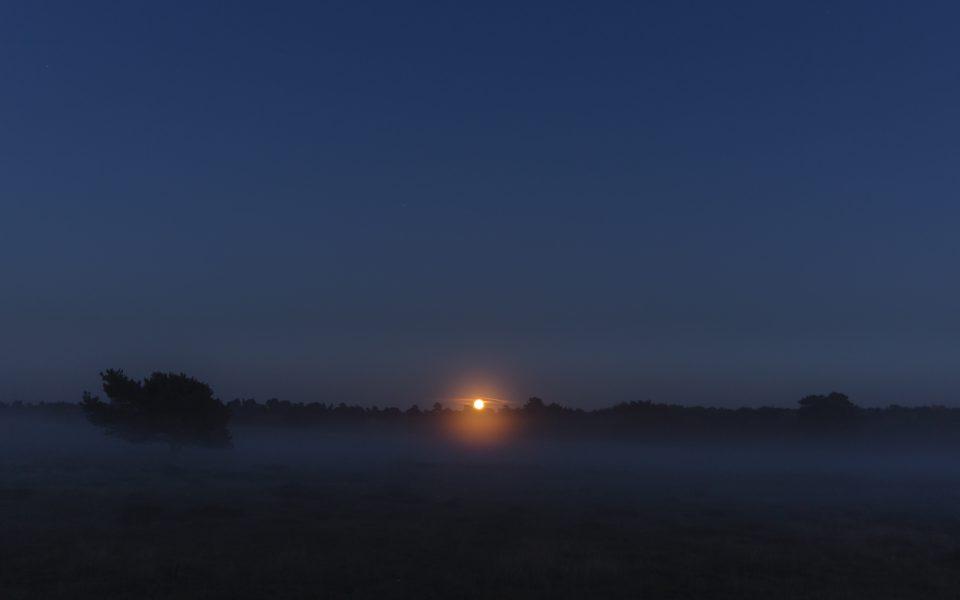 Hintergrundbild Westruper Heide - Außergewöhnlicher Blutmond