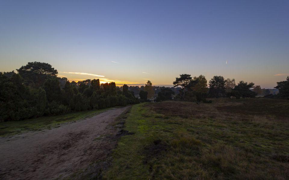 Hintergrundbild Weg in die Heide