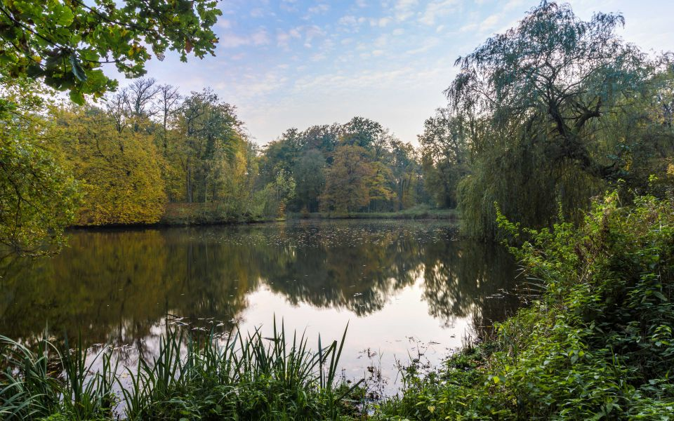 Hintergrundbild Schlosspark Raesfeld