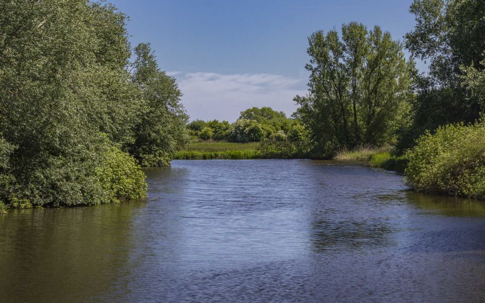 Hintergrundbild Kleiner Teich an der Kuhbrücksau