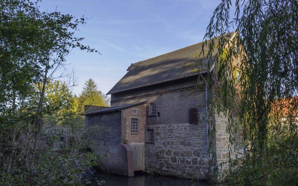 Hintergrundbild - Blick zur Mühle