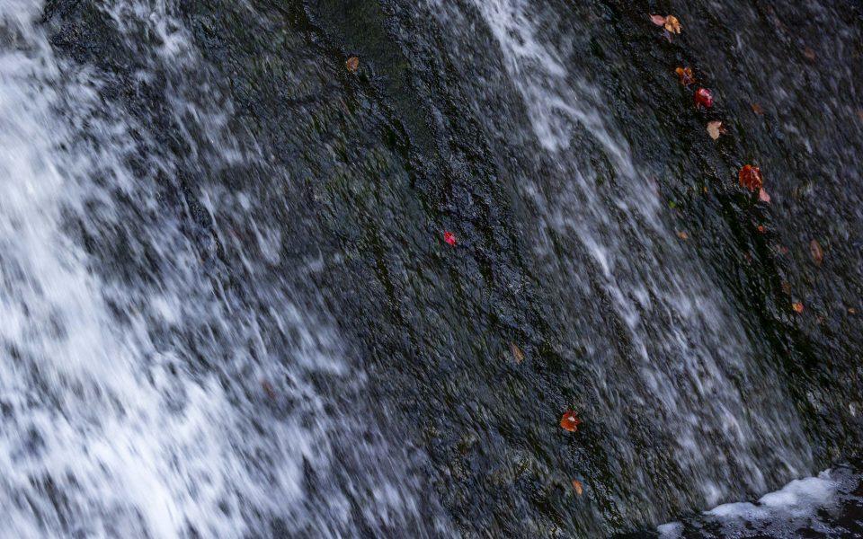 Hintergrundbild - Farbtupfer am Mühlwehr