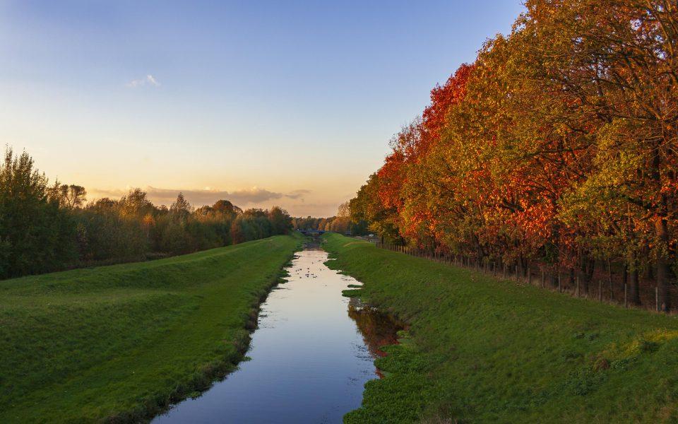 Hintergrundbild - Herbstfarben am Bach