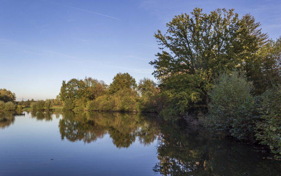 Hintergrundbild - Herbstnachmittag am Mühlteich