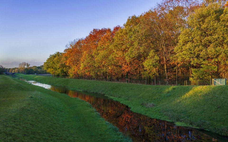 Hintergrundbild - Herbststimmung am Bach