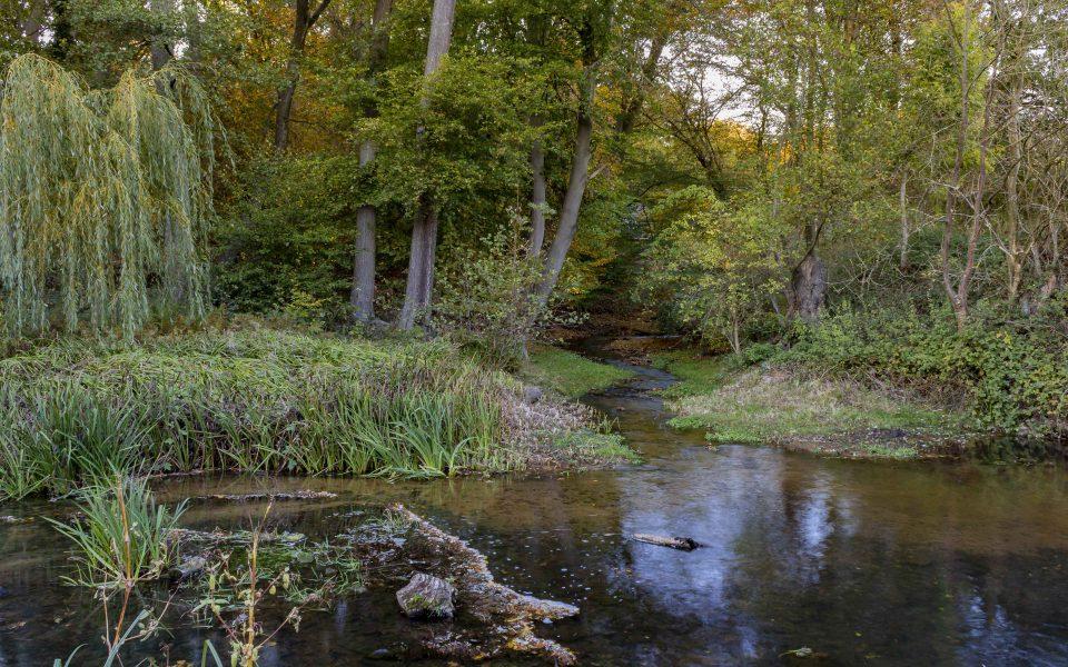 Hintergrundbild - Mühlbach mit Unterwasser