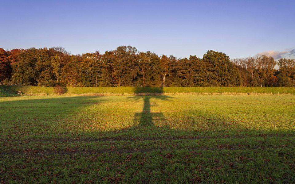 Hintergrundbild - Schattenspiele im Herbst
