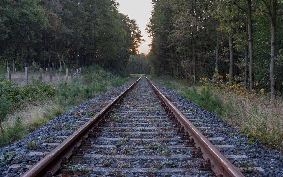 Hintergrundbild - Schienen im Wald