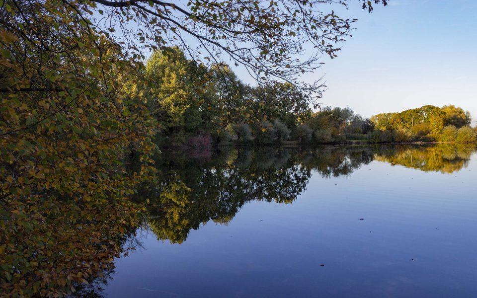 Hintergrundbild - Spiegelungen im Wasser