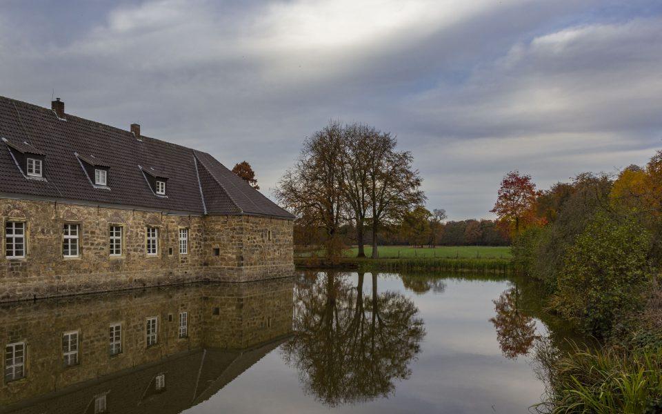 Hintergrundbild - Spiegelung im Schlossteich
