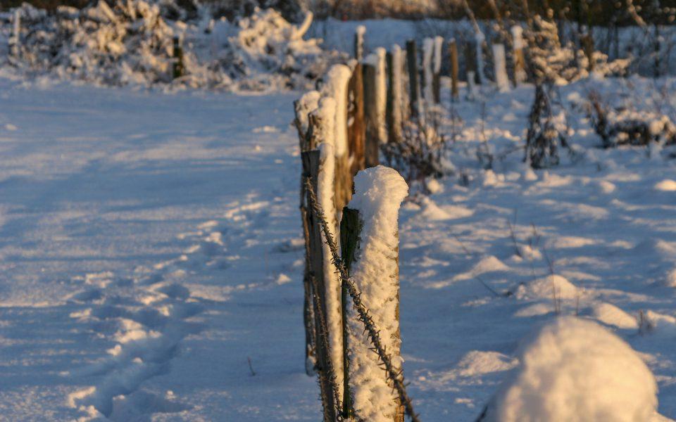 Hintergrundbild - Weidezaun im Winter