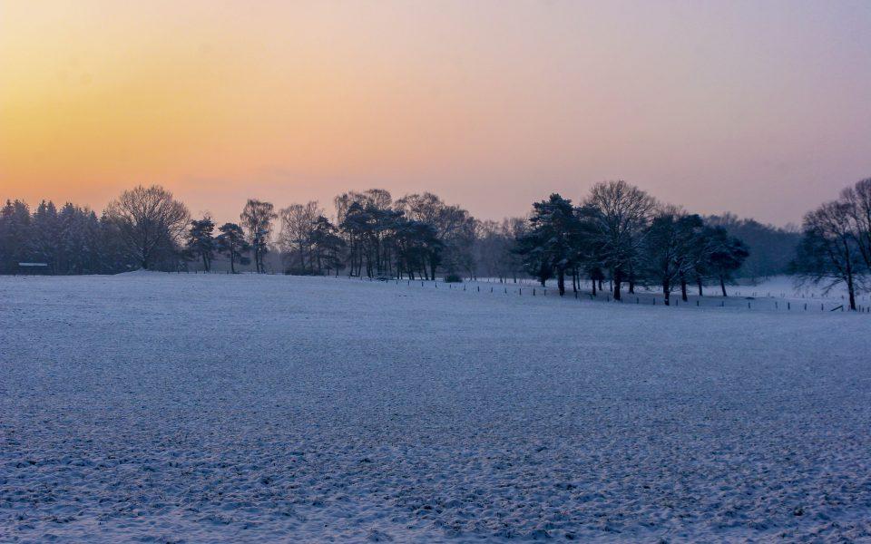 Hintergrundbild - Wintermorgen mit Morgenröte