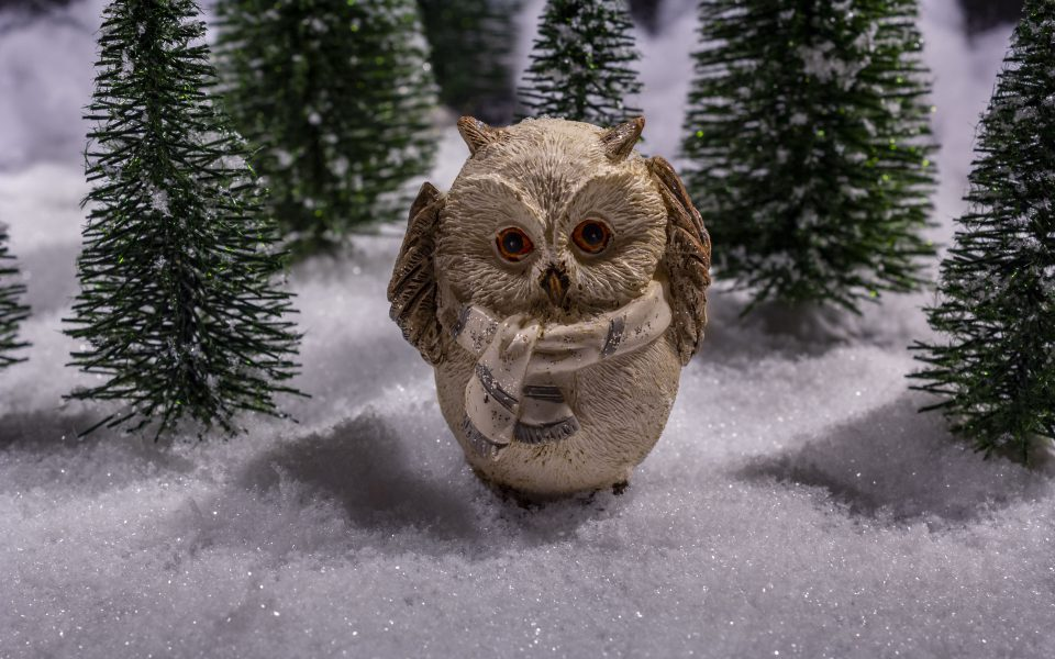Hintergrundbild - Weihnachten Eule im Schnee