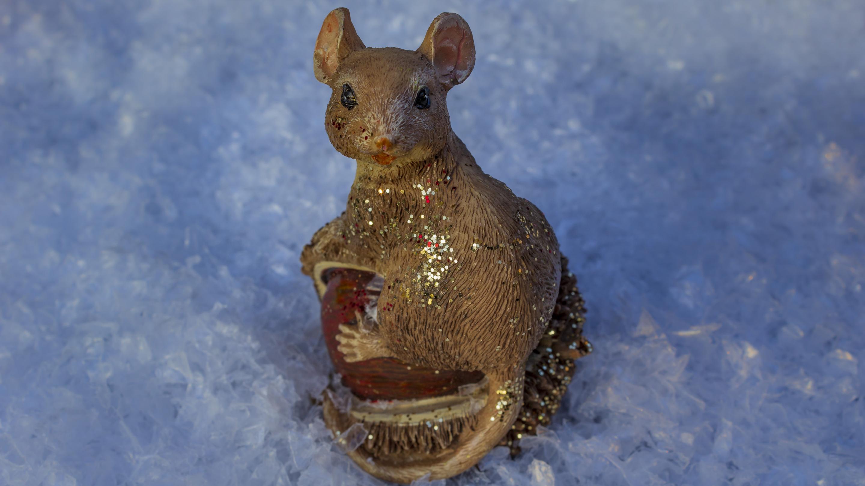 Hintergrundbild Weihnachten Maus Im Schnee