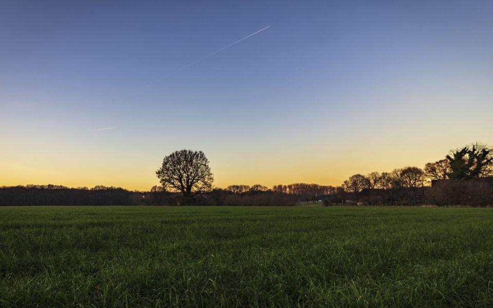 Hintergrundbilder - Natur pur im Ruhrgebiet