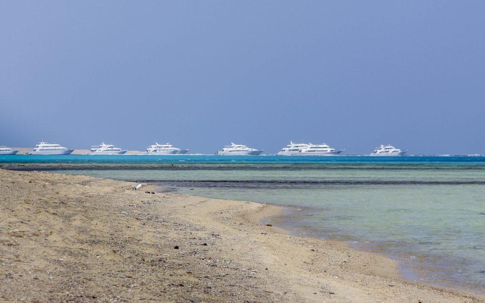 Hintergrundbilder - Weiße Flotte in Marsa Alam
