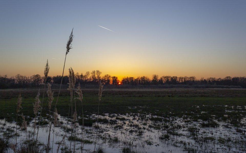 Hintergrundbilder - Sonnenuntergang über Feuchtwiesen